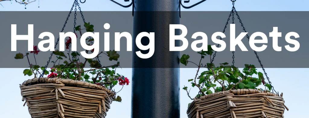 Hanging Baskets in Wood Green