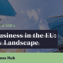London Business Hub Brexit support